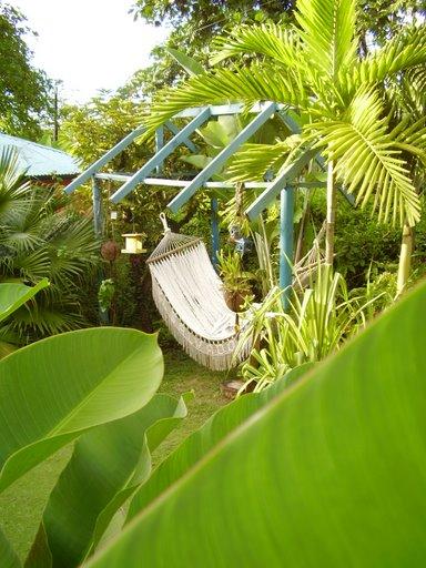 Scene from Mikuzi - Portland, Jamaica